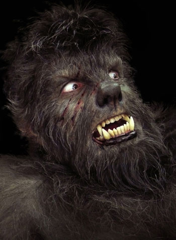 photo1-the-wolfman
